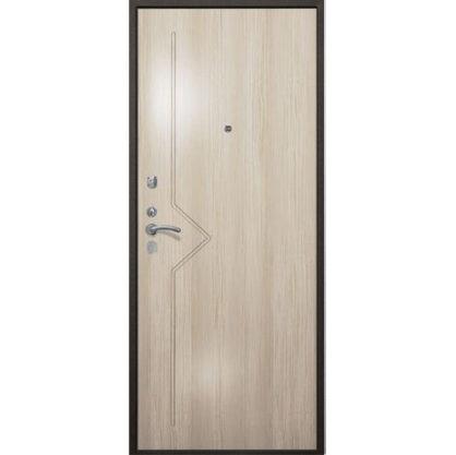 Стальная дверь ДС 2  стандарт +